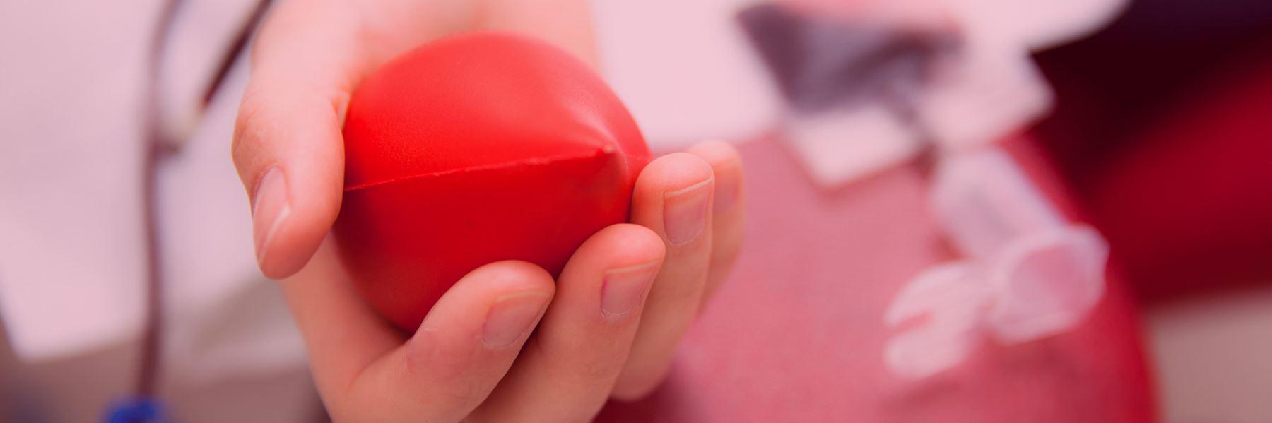 """En närbild på en hand som håller i ett """"hjärta"""""""